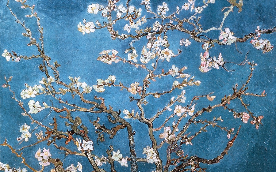 Almond Branches In Bloom, St. Remy, 1890